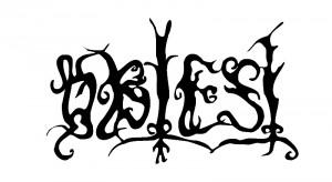 obtest logo s